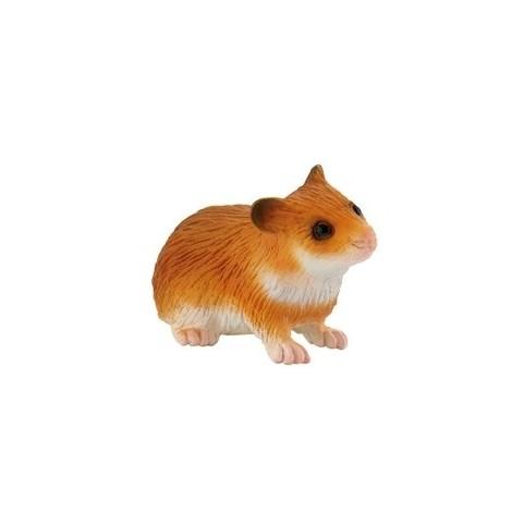 Hamster imagine