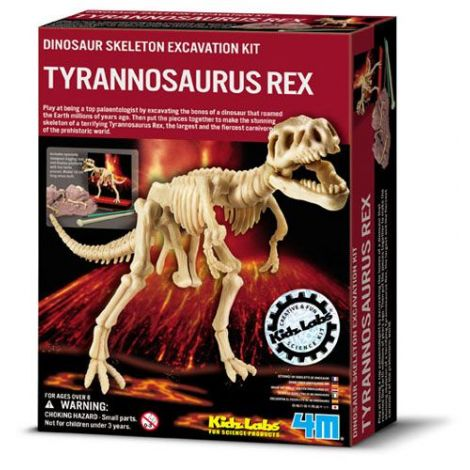 Set Arheologic Tyrannosaurus Rex