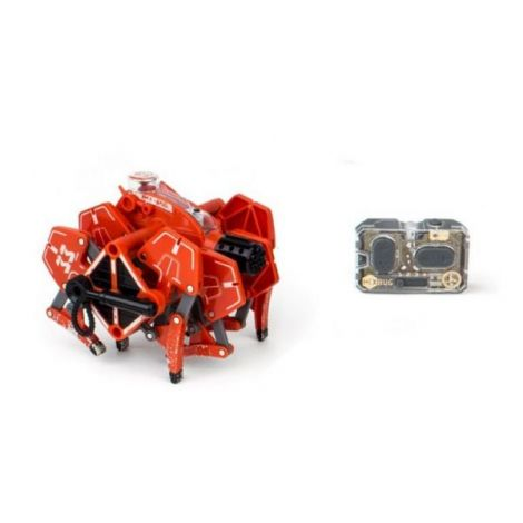 Battle Tarantula cu telecomanda (2 modele) - Hexbug