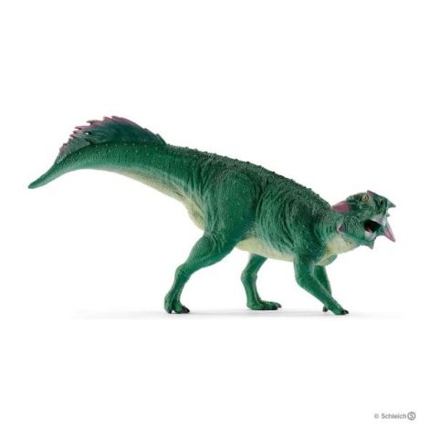 Pasittacosaurus sl15004