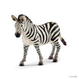 Zebra femela sl14810