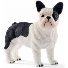 Caine french bulldog sl13877