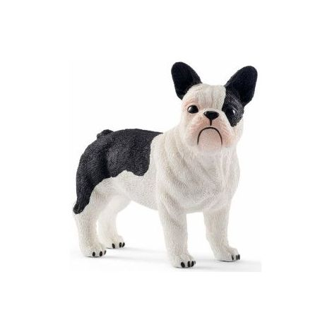 Caine french bulldog sl13877