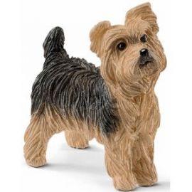 Caine yorkshire terrier sl13876