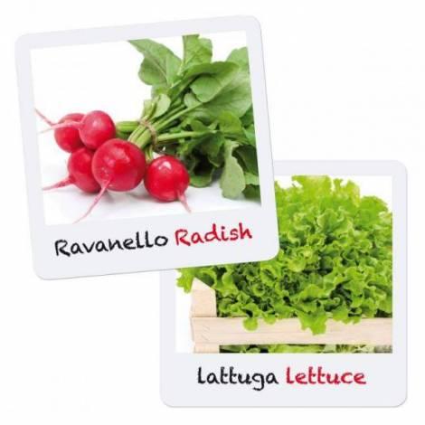 Joc Micul Gradinar Cultiva Salata si Ridichii