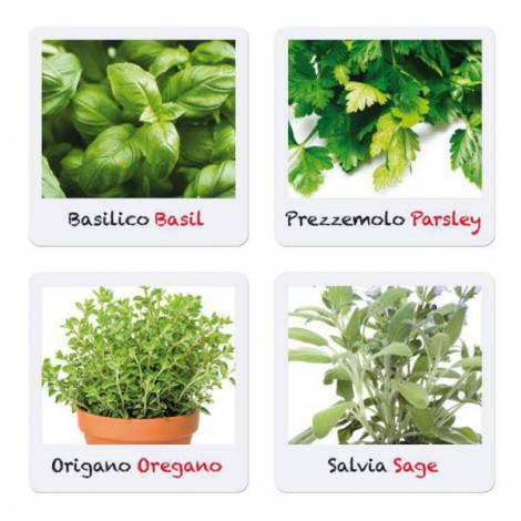 Joc Micul Gradinar Cultiva Plante Aromatice