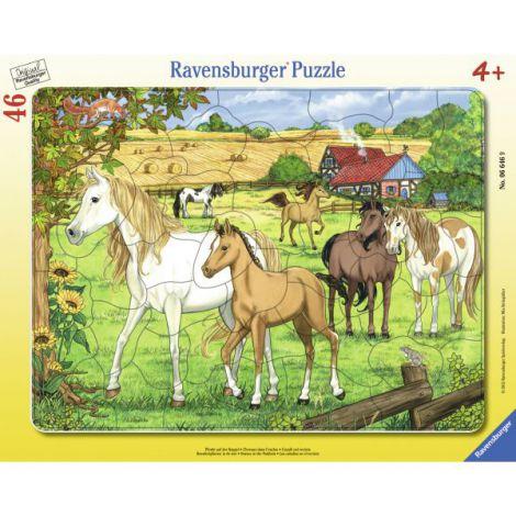 Puzzle cai la ferma, 46 piese
