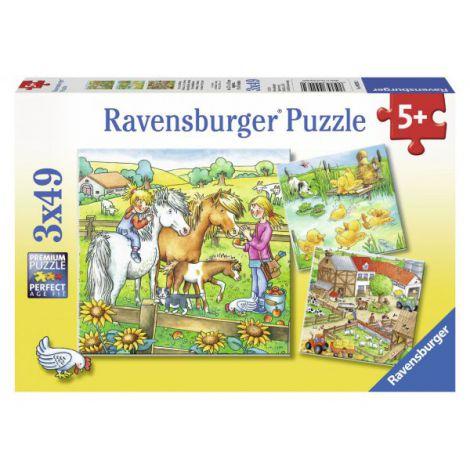 Puzzle animale de curte, 3x49 piese