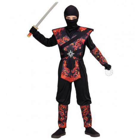 Costum ninja dragon