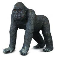 Gorila Occidentala - Collecta