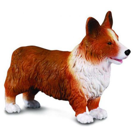 Corgi - Collecta