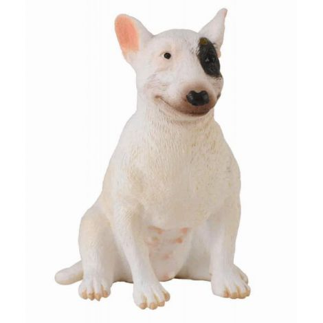 Caine Bull Terrier femela - Collecta