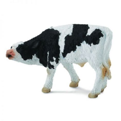Friesian Pui - Collecta