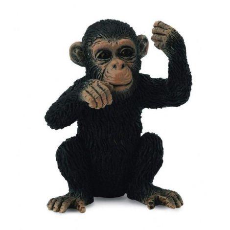 Cimpanzeu Pui - Collecta