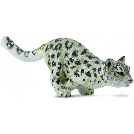 Leopard De Zapada Pui - Collecta imagine