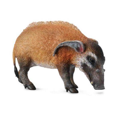 Porc Rosu- Collecta