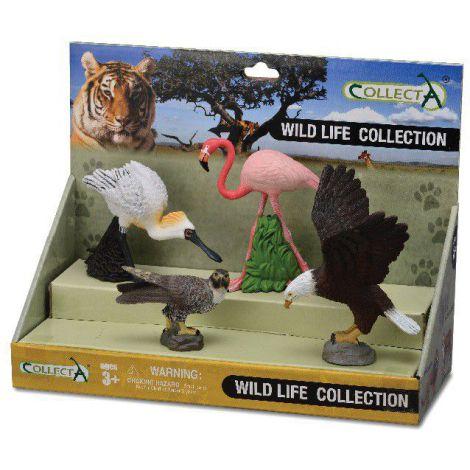 Set 4 figurine pasari exotice - Collecta 89810
