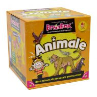 Animale – BrainBox