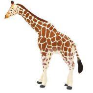 Figurina Girafa Adulta