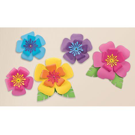 5 flori hibiscus carton