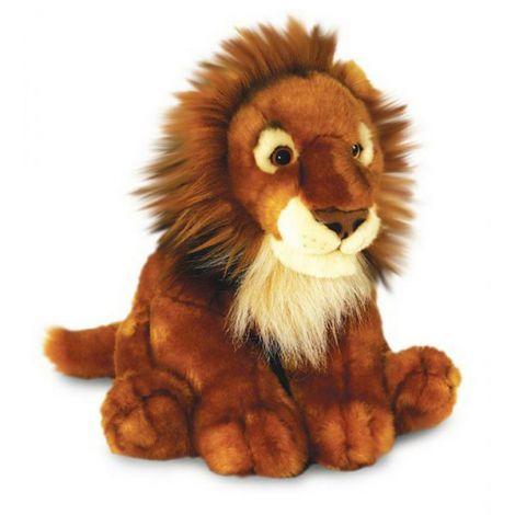 Plus 40cm Leul African