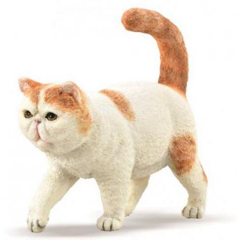 Figurina pictata manual Pisica Exotic Shorthair