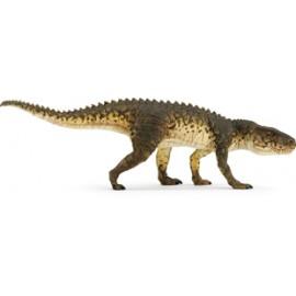 Colectia De Dinozauri A Muzeului Carnegie