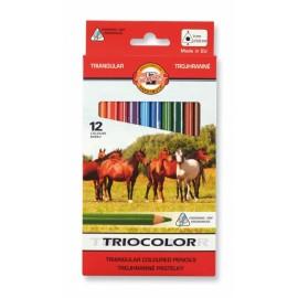 Set 12 creioane Triocolor jumbo - Koh I Noor