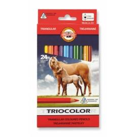 Set 24 creioane Triocolor jumbo - Koh I Noor
