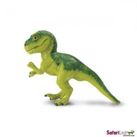 Puiul de tyrannosaurus rex