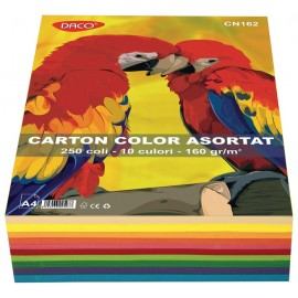 Carton A4 color asortat 10 culori