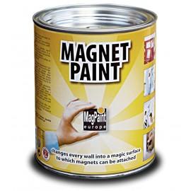 Vopsea cu proprietati magnetice 500 ml - MagnetPaint