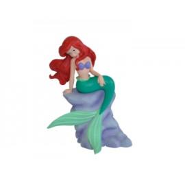 Ariel pe stanca