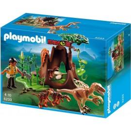 Deinonychus si velociraptors