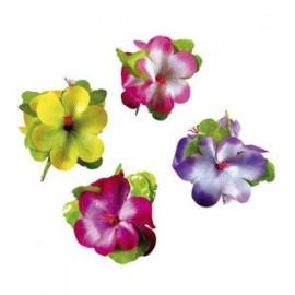Clama flori hibiscus