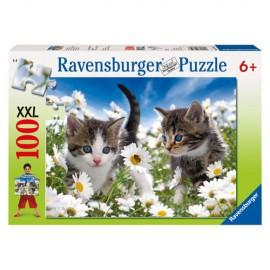 Puzzle pisicute si margarete 100 piese