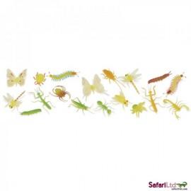 Insecte Fosforescente 48