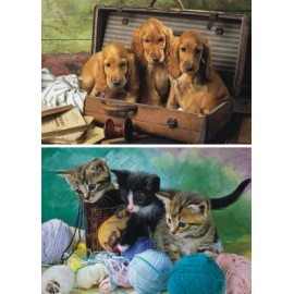 Puzzle 2 in 1 - animalute jucause (48 piese)