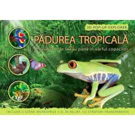 Padurea Tropicala