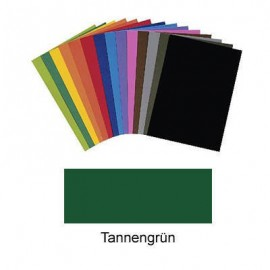 Carton colorat Verde inchis 220g 10