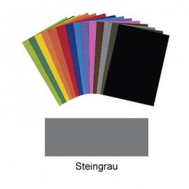 Carton colorat Gri 220g B