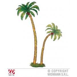 Set 2 palmieri