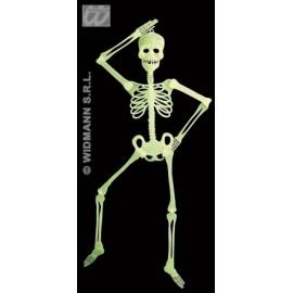Deco schelet neon