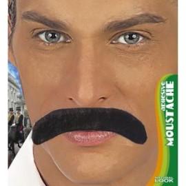 Mustata gentleman