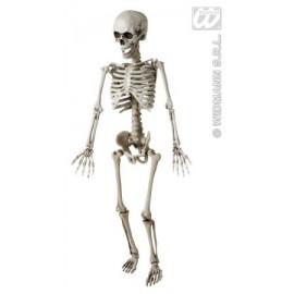 Decor schelet pentru scaun