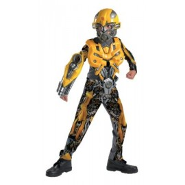 Costum Transformers