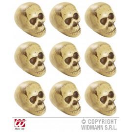 Set capete schelet