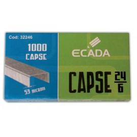 Capse nr. 24/6 Ecada
