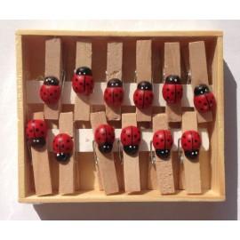 Set 12 cleme lemn cu buburuza