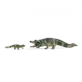 Set joaca schleich aligatori 41408